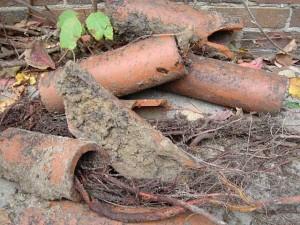 Ρίζες και σκουπίδια μετά από απόφραξη